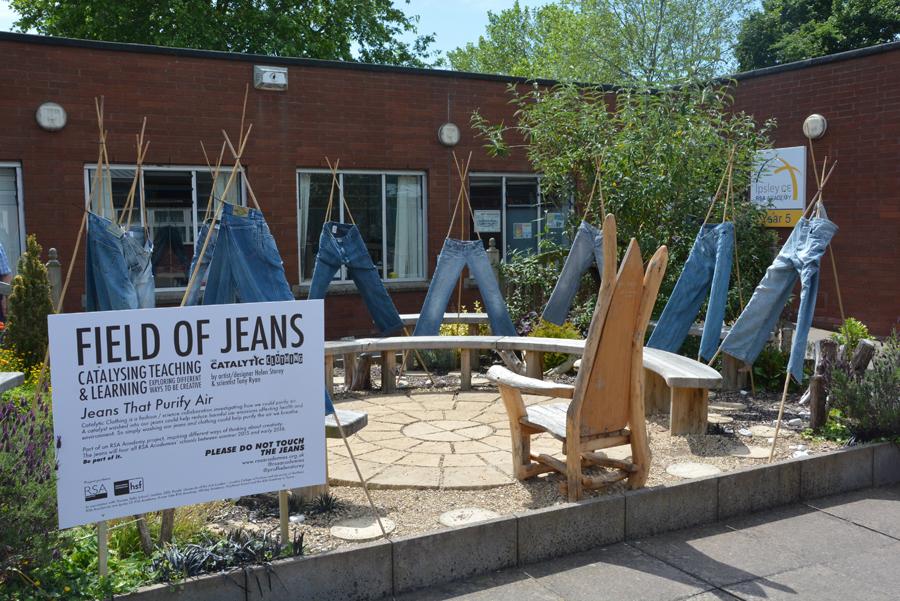 Field of Jeans
