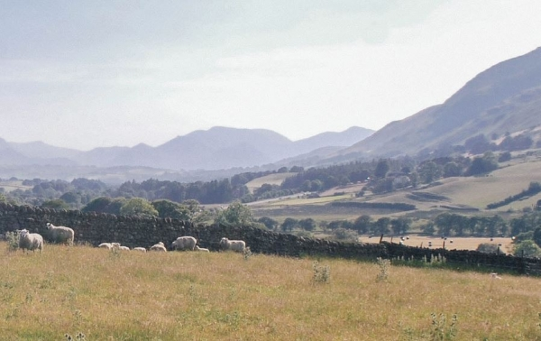 Locally led inquiry report: Cumbria - Gap analysis for Cumbrian upland farming initiatives post-Brexit