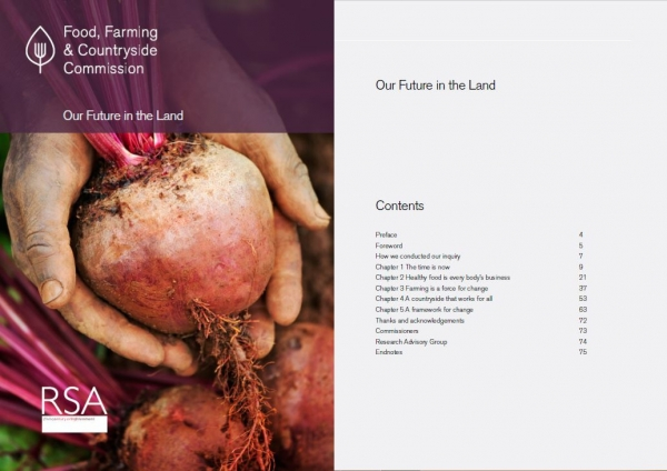 Final Report – Our Future in the Land