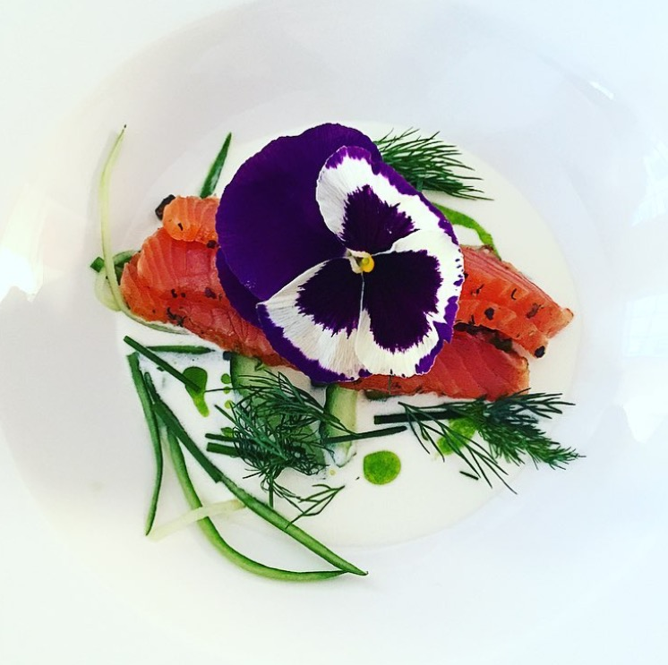 Recipe of the month: Gin & Tonic cured sea trout, cucumbers, buttermilk, chive oil